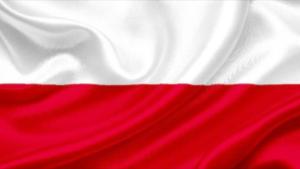 Polski Prawnik Sarasota