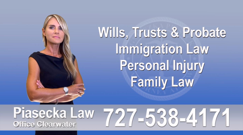 Florida, Polish, Attorney, Lawyer, Polski, Prawnik, Adwokat, Floryda, USA, Agnieszka Piasecka, Aga Piasecka, Piasecka, Sarasota